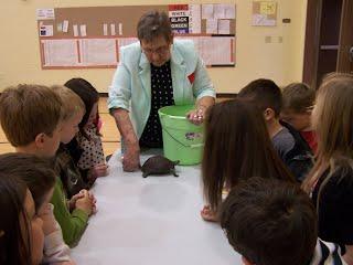 Vert shows kindergarteners a turtle.